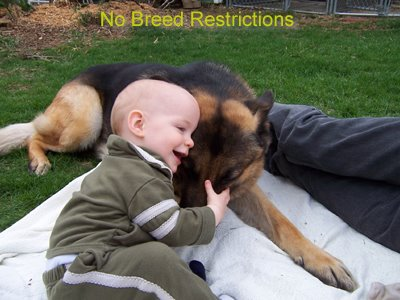 No Breed Restrictions